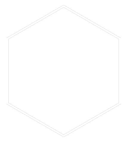 sport icon white